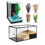 Fische und Reptilien
